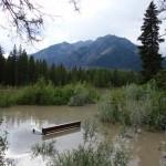 Banc sous l'eau - Banff
