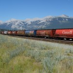 Train - Jasper