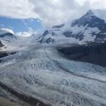 Glacier Robson- Snowbird pass, Mount Robson