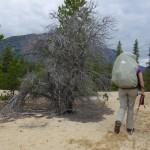 Dernier jour - Chilkoot Trail