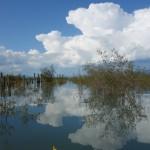 Reflets - Lac Laberge, YT