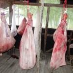 La fin de l'Orignal - Slaven's Roadhouse, AK