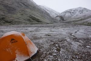 Réveil enneigé - Denali, Alaska
