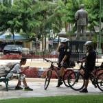 Police montée - Oahu, Hawaï