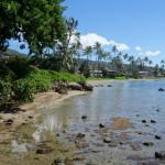 Sortie d'Honolulu - Oahu, Hawaï