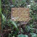 Interdit d'interdire - Hawaï