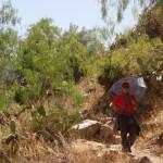 Randonnée sous le soleil - Canyon de Colca