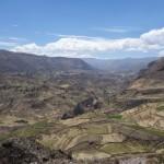 Terrasses - Canyon de Colca