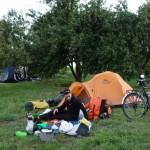 Camping dans un jardin, Puerto Nuevo