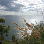 Fjord, Carretera Austral